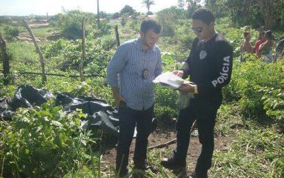 Corpo de adolescente é encontrado em matagal em Barão de Grajaú – MA