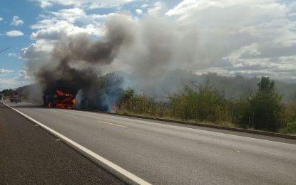 Ônibus da empresa Jurandir fica totalmente destruído após pegar fogo na BR 343