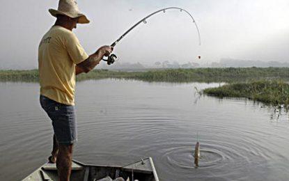 Seguro Defeso é hoje o paraíso dos falsos pescadores