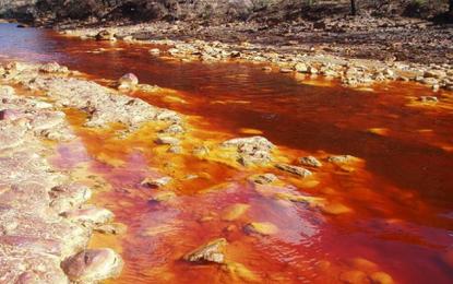 MP investiga uso de veneno em vazantes próximas ao Rio Parnaíba em Uruçuí