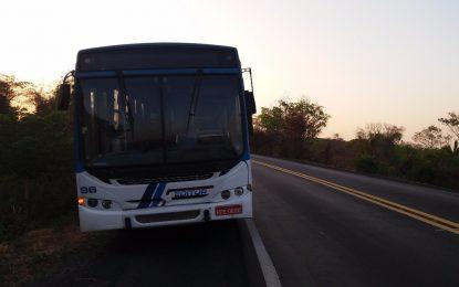 Bando assalta passageiros e efetua disparos dentro de ônibus na BR-316