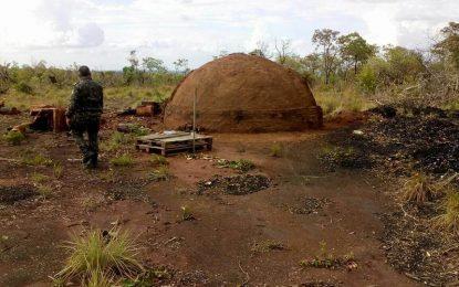 Semar realiza ações contra crimes ambientais no cerrado do Piauí