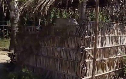 No Piauí, 12,3% da população vive em domicílios sem banheiro