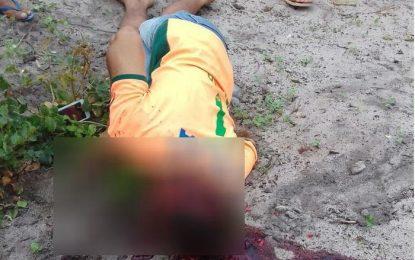 Homem mata esposa e enteado com foice e deixa cinco feridos
