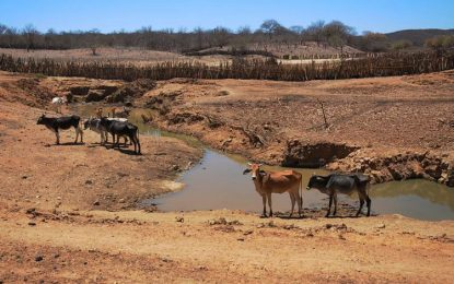 União libera R$ 12 milhões para combate à seca no Paiuí
