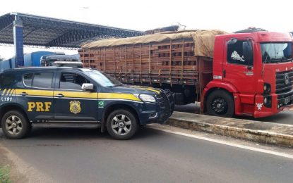 PRF apreende caminhão com 34,7 toneladas de madeira ilegal em Bertolínia