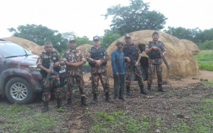 Operação da PM coíbe caça ilegal em comunidades rurais de Floriano