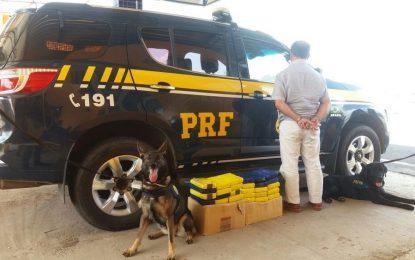Homem é preso em Piripiri com 27 tabletes de cocaína