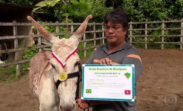 Jumento paga empresa e é diplomado como um dos melhores prefeitos do Brasil