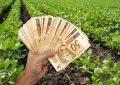 Produtores rurais têm até dezembro para regularizar dívidas com BNB