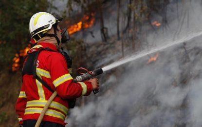 Floriano está entre os municípios com leitura mais crítica de focos de calor