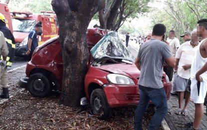 Motorista morre ao colidir carro em árvore na Av. Maranhão em Teresina