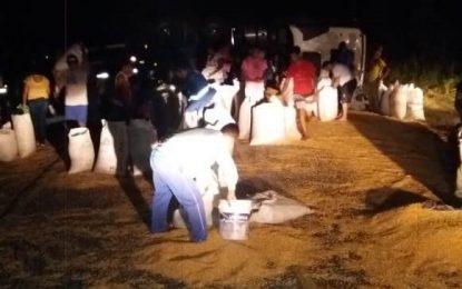 Carreta carregada de milho tomba na zona rural de Floriano