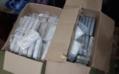 Droga apreendida pela PRF em Floriano é avaliada em 5 milhões