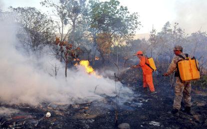 Piauí é o terceiro do Nordeste no ranking de queimadas