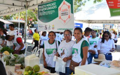 Feira de Agricultura Familiar traz visibilidade a produtos orgânicos de Floriano
