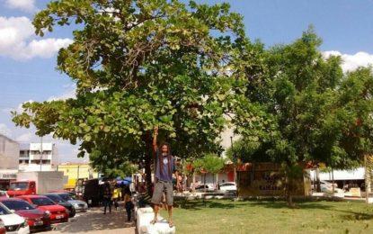 Ecologista se acorrenta em protesto contra derrubada de árvores em Picos