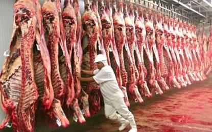 Arroba do boi gordo cai 15%, e preço da carne deve diminuir em janeiro