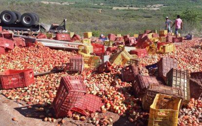 Caminhão carregado de tomates tomba em ladeira de município no Piauí