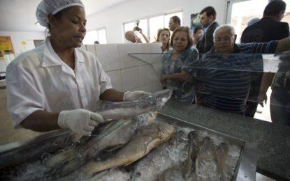 Peixe deve ficar mais caro na Semana Santa, aponta pesquisa