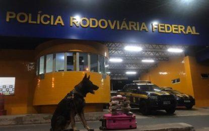 PRF localiza maconha e cocaína em ônibus em Floriano