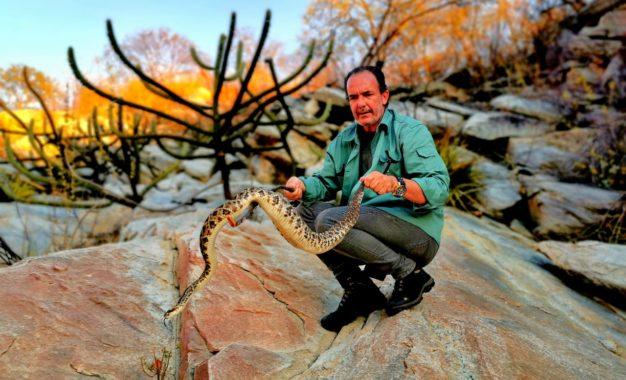No Piauí, fotojornalista encontra uma das serpentes mais temida