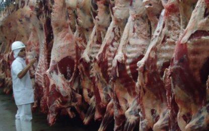 Depois do arroz, governo estuda redução tarifária para soja e carne