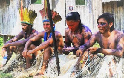 Cresce número de prefeitos e vereadores indígenas